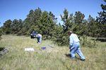 CQC Field Day Battleground Site by Roger J. Wendell - 06-29-2014